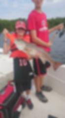redfish,snook,