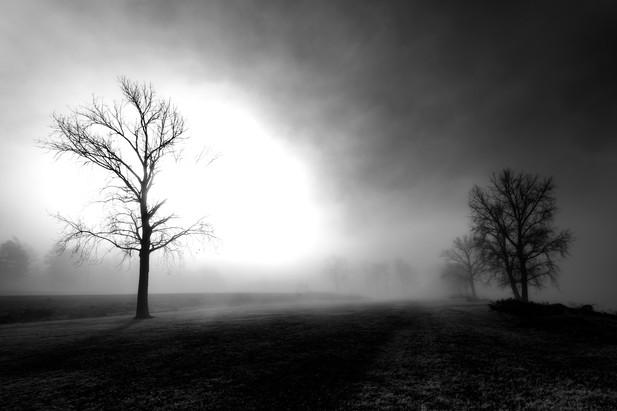 Memphis Fog-05.jpg