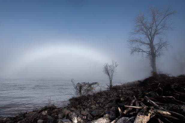 Memphis Fog-08.jpg