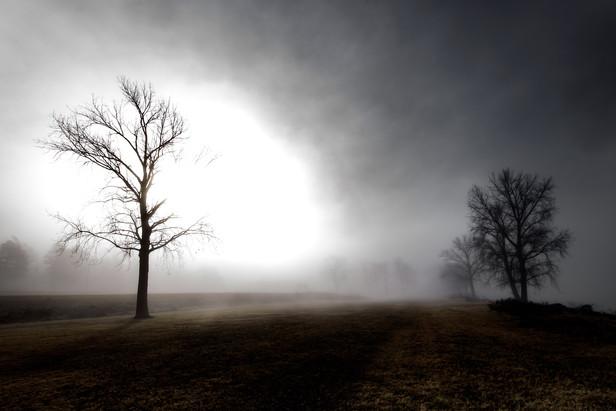 Memphis Fog-04.jpg