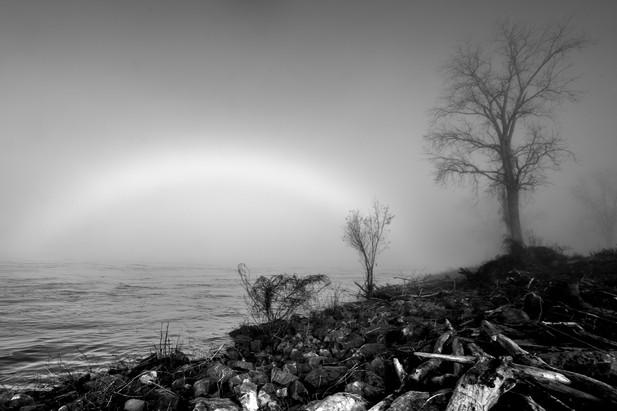Memphis Fog-09.jpg