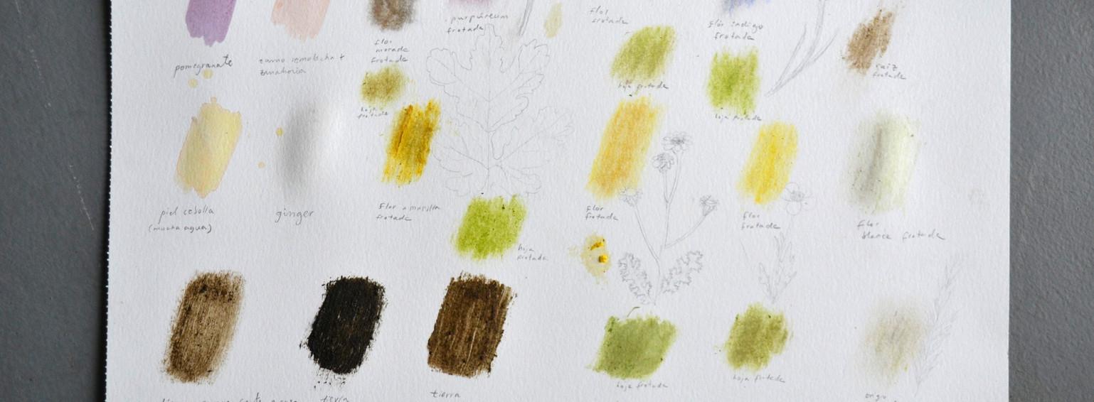 Color tests / Pruebas de color
