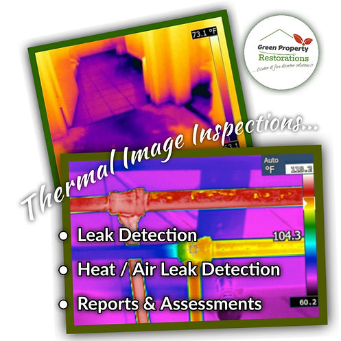 Thermal Image.jpg