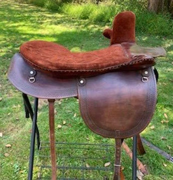 nearside lillian western sidesaddle.jpg