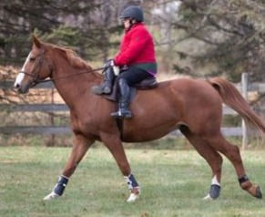 Tammie and Porter Cantering