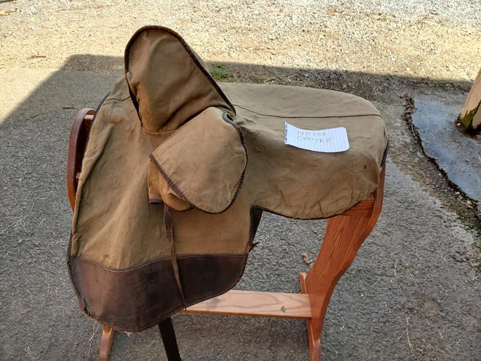 sidesaddle whippy cover near.jpg