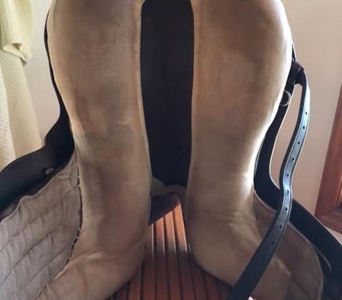 kn bottom sidesaddle.jpg