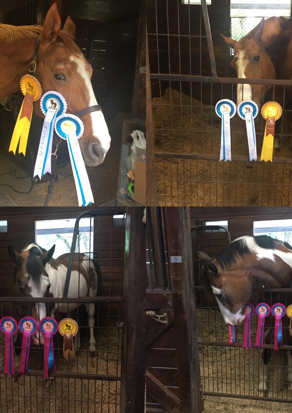 Porter and Sol showing off some of their UK Virtual Ribbons
