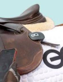 clip on saddle.jpg