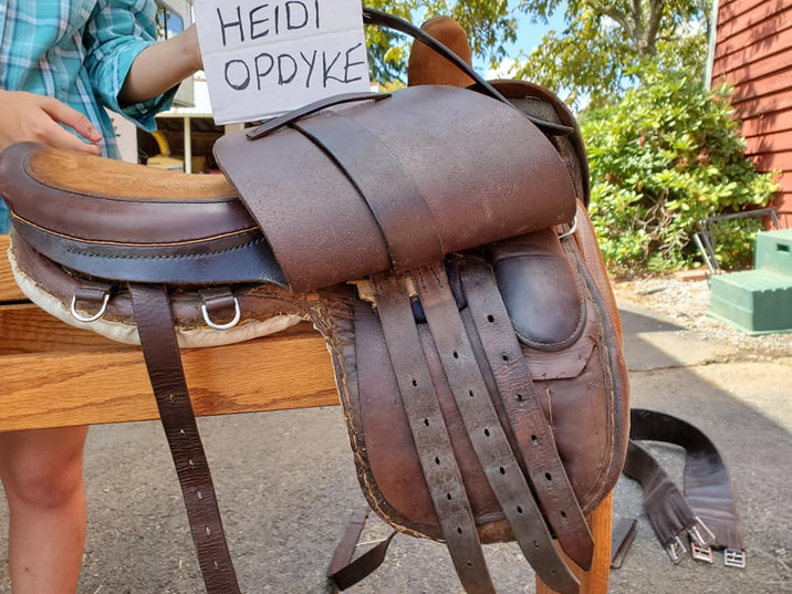 maids side saddle off side.jpg