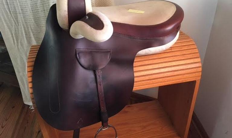 kn sidesaddle near side.jpg