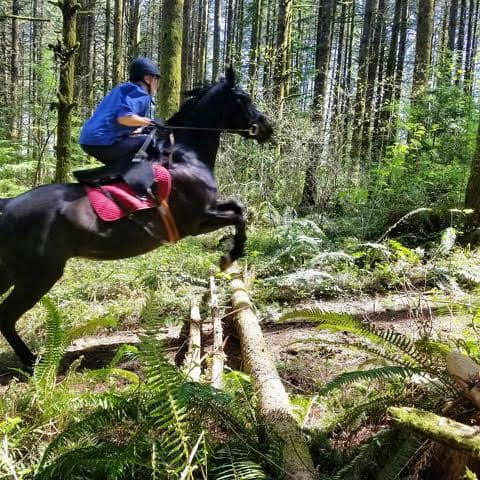 Pat Blaire on Gabby out for a trail