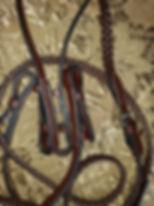 braided reins.jpg