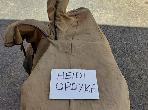 sidesaddle whippy cover top.jpg