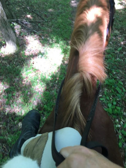 Side saddle trail
