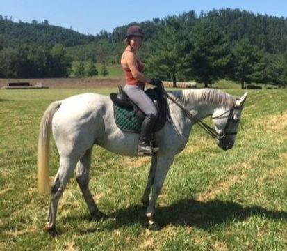 Merlin Kate Hopkin's New Horse