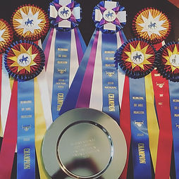 high point ribbons.jpg