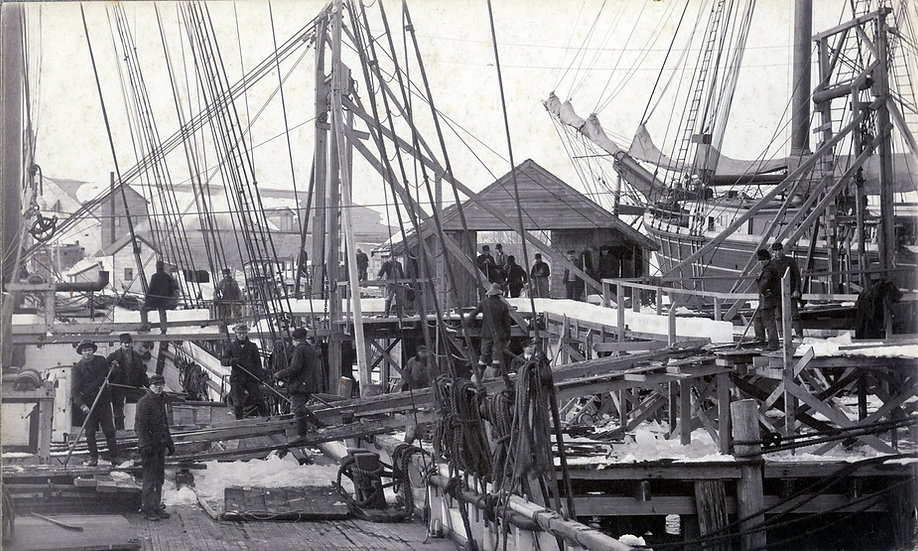 Maine Ice Company loading ice from West Harbor Pond onto schooner General E. S. Greeley Boothbay Harbor
