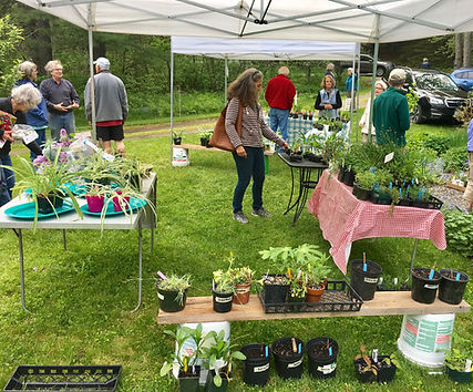 West Harbor Pond Watershed Association annual plant sale Boothbay Harbor Maine