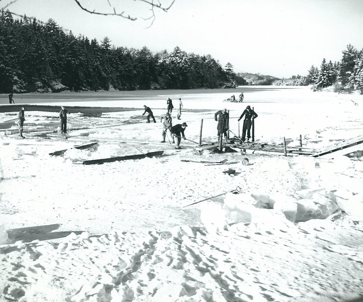 Maine Ice Company harvesting on West Harbor Pond Boothbay Harbor