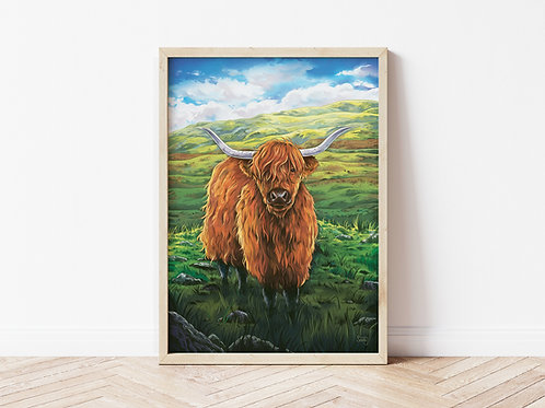 Print, 'Highland Coo'