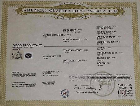 arbs papers.jpg