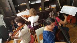 Grupo Schubert