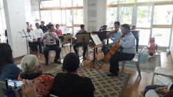 Grupo Mozart flauta