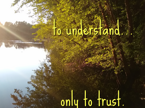 The Pain of Grief: Trusting in God When We Don't Understand