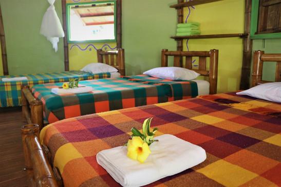 Beds MALOKA