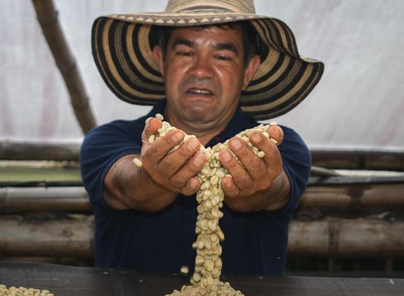 La Cabaña Coffee Farm
