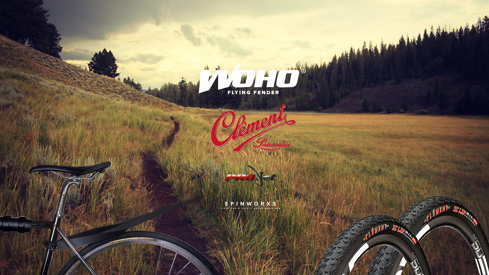 "ProNet Cycling SpinWorx Clement 29"" LXV mtb tires and WoHo Flying Fender"