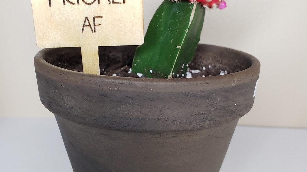 Plant signs set (8)