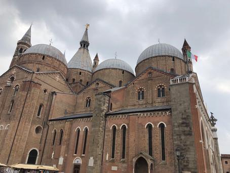 Easy pilgrimage to St. Anthony's Basilica