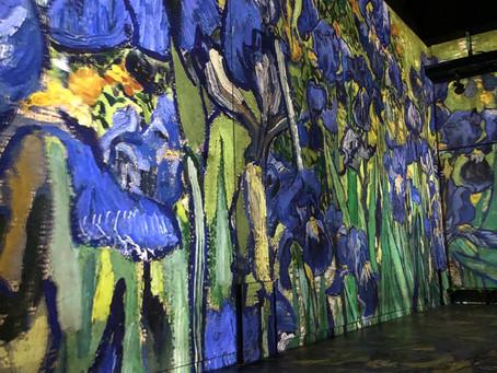 Jumping into Van Gogh's art
