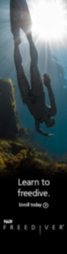 The PADI Basic Freediver course is a subset of the PADI Freediver course. It's a great first step for developing solid freediving skills. You learn basic freediving principles and focus on practicing breathhold techniques