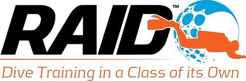 Logo_of_RAID.jpeg