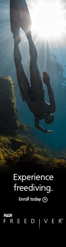 You learn to control your breathing and heart rate. It's an amazing feeling when you're at depth and you feel your body make the necessary adaptations to facilitate diving, and your desire to breathe lessens. ... Most people practice the buddy system when scuba diving, but it's an absolute must for freediving.