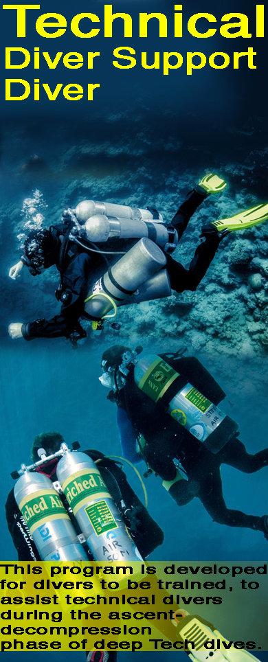 TEC Diver Support.jpg