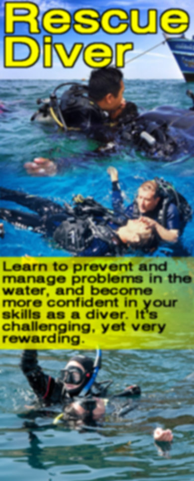 rescue diver.jpg