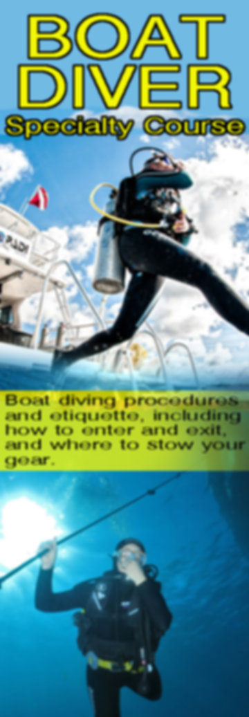 The ocean is filled with dive sites, but many of them cannot be reached from shore. This program gives you the skills and knowledge required to safely dive from a boat, allowing you to get the most from your underwater opportunities. You will earn the Boat Diving Specialty certification after completing this program.