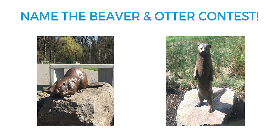 Name the Beaver & Otter Contest