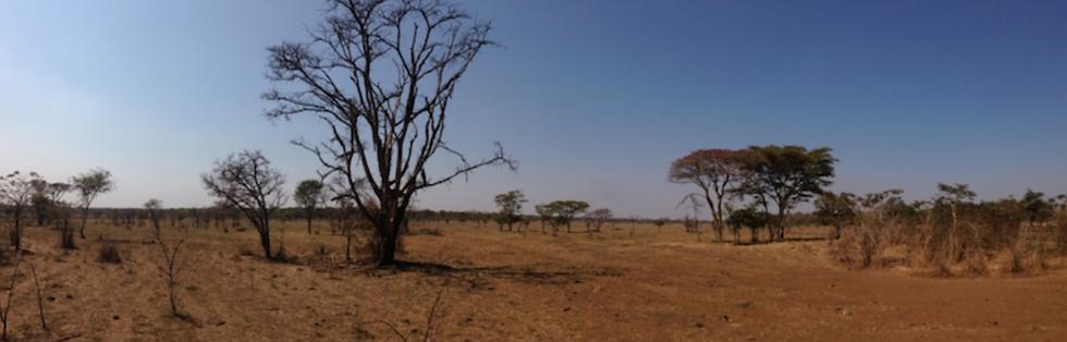 Zambian_Landscapes_taste_of_zanzibar.png