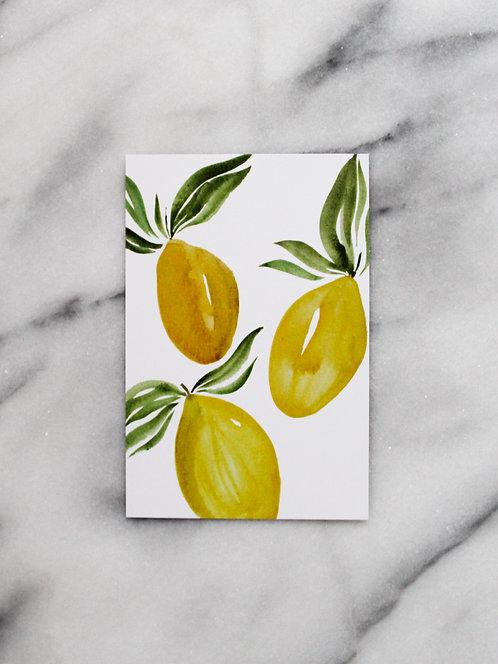 Vintage Lemons - Postcard
