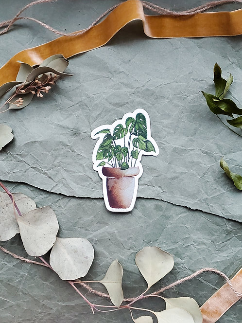 Monstera - Sticker