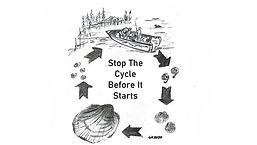 cycle II.jpg