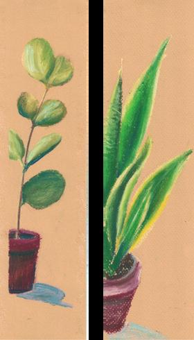 Plants l & ll