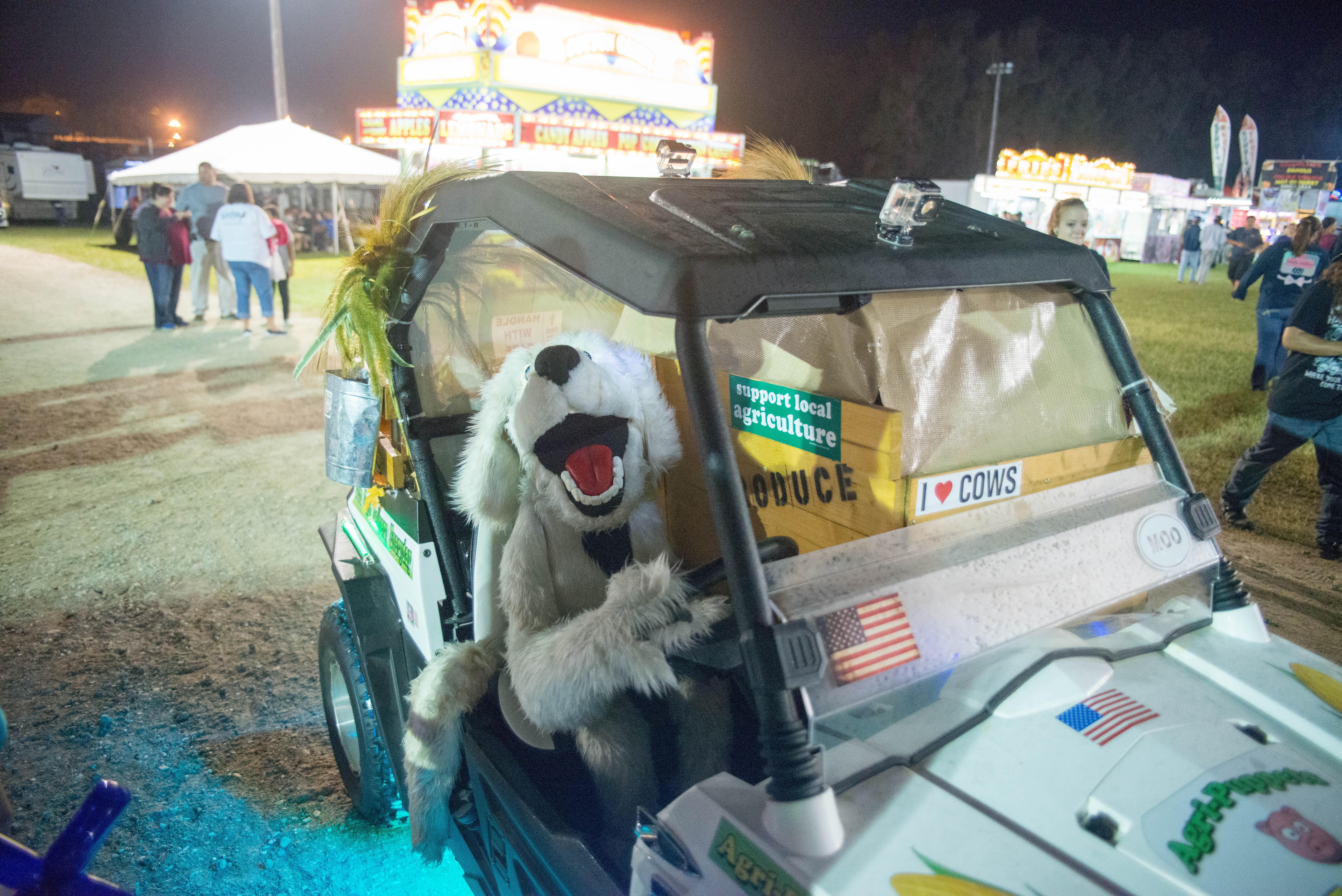 Columbus County Fair Thursday 2016 (3)