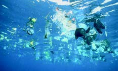 APL PROVIDING FREE SHIPPING TO THE OCEAN CLEANUP TO RID THE OCEANS OF PLASTICS