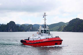 Port Napier, NZ, Places Order for  Damen ATD Tug 2412